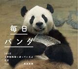 毎日パンダ 365日上野動物園に通っているよ日記