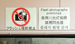 フラッシュ禁止