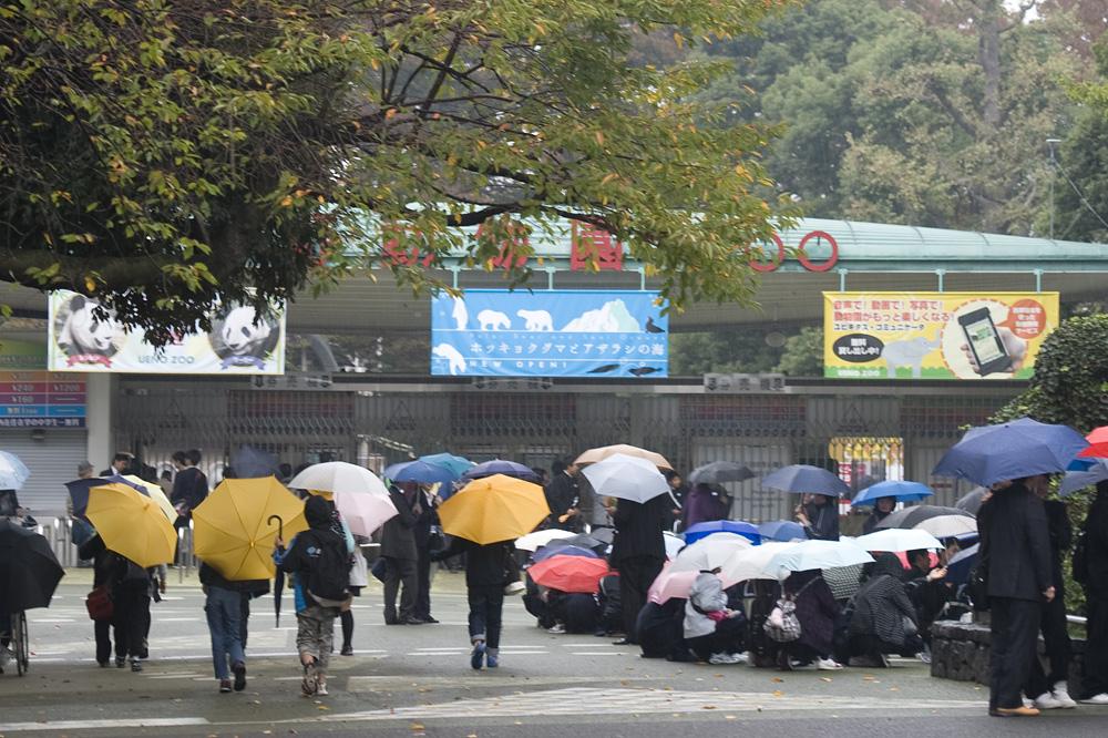 上野動物園開園