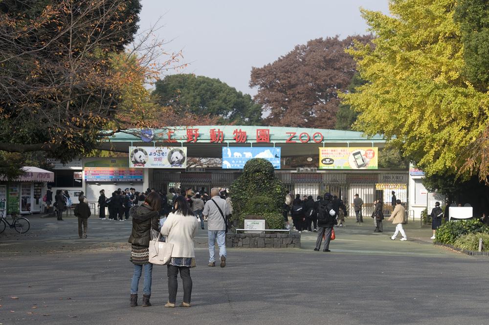開園前の上野動物園