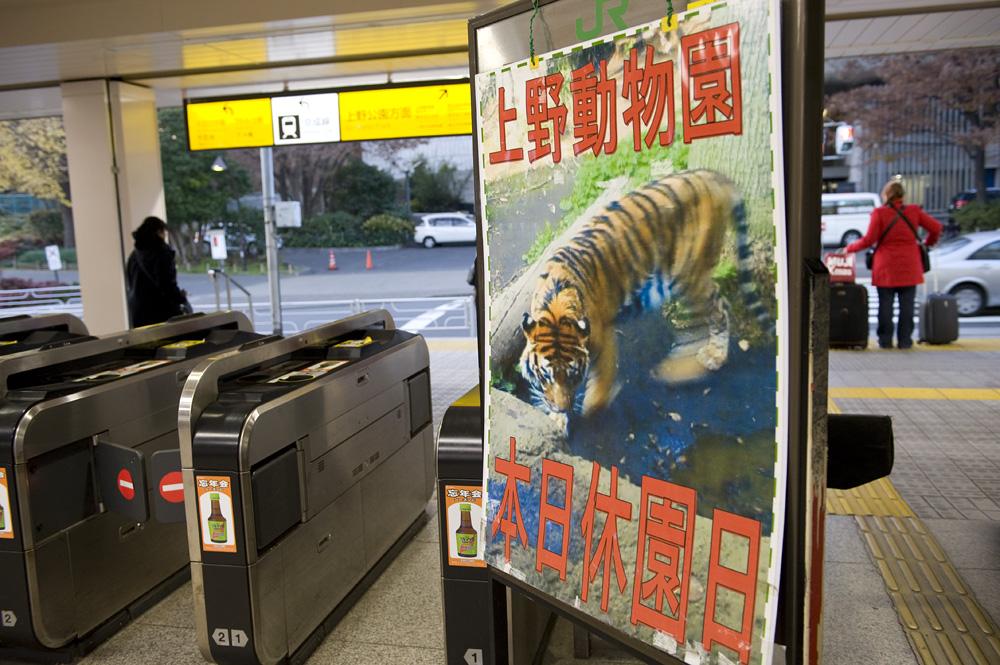 上野動物園本日休園日