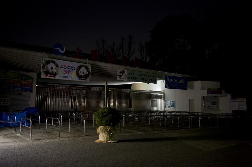 夜の上野動物園