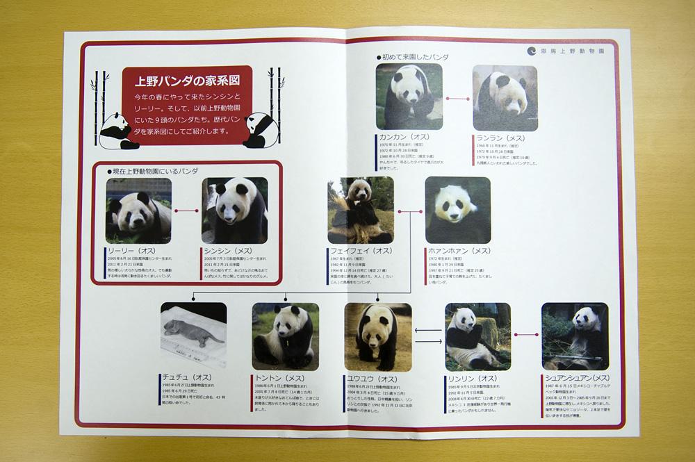 上野パンダ家系図