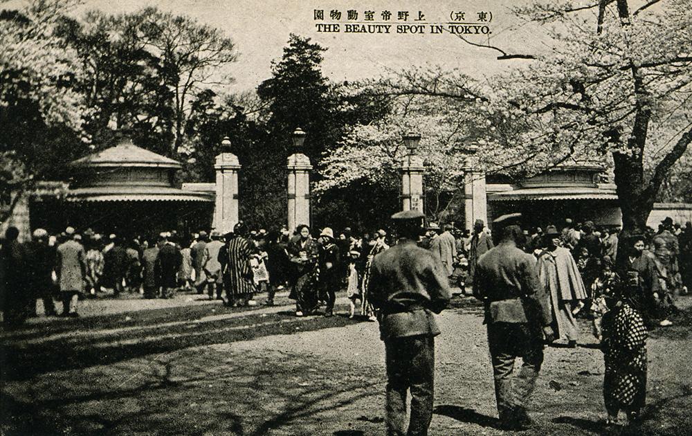 上野帝室動物園