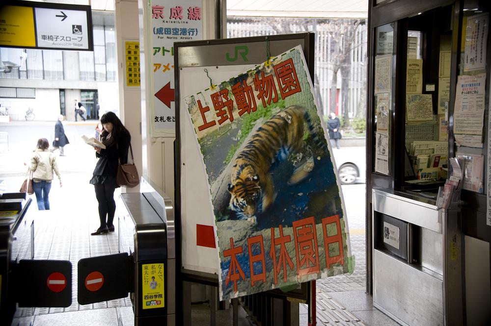 上野動物園 本日休園