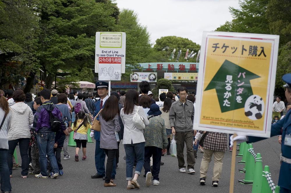 上野動物園 パンダ140分待ち