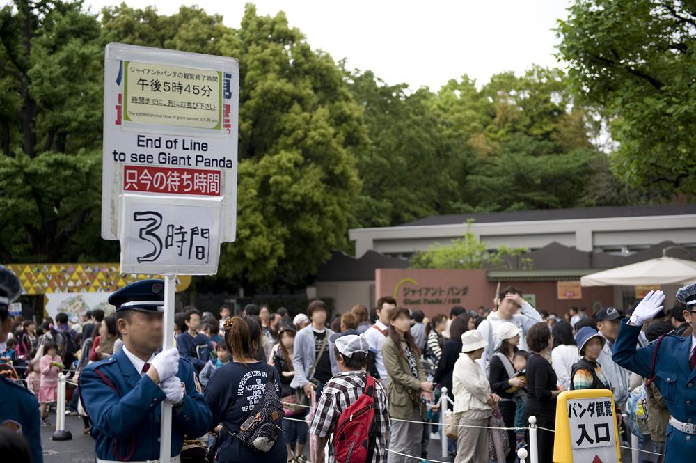 上野動物園 ジャイアントパンダ観覧3時間待ち