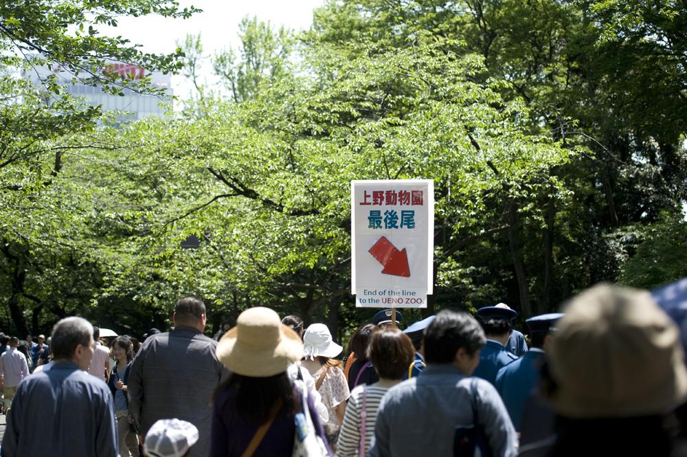 上野動物園最後尾