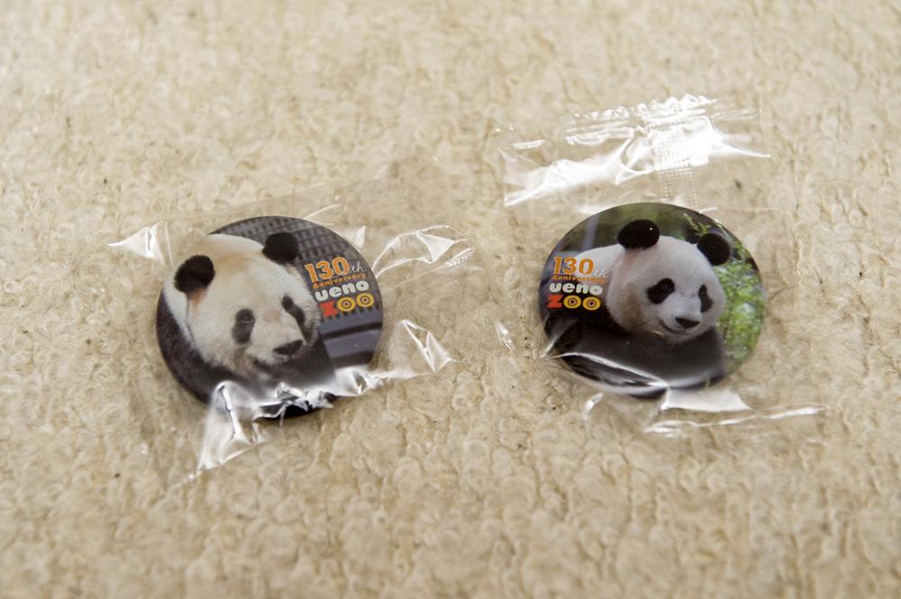 上野動物園 リーリー・シンシンのバッヂ