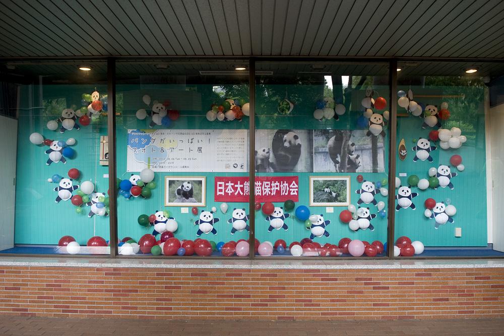 パンダがいっぱい! フォト&アート展