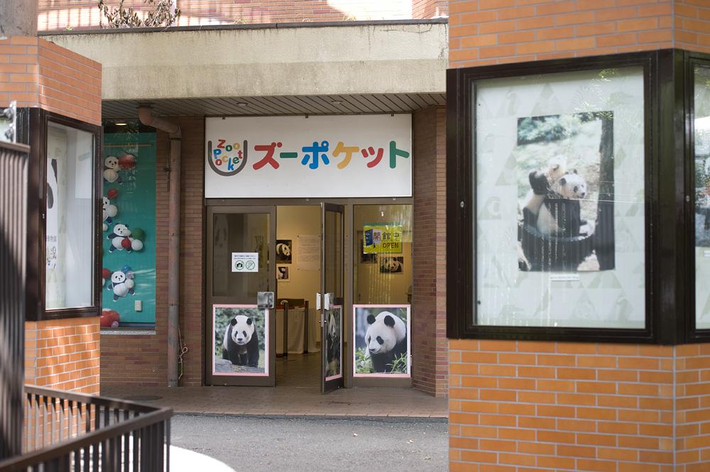 「パンダがいっぱい!フォト&アート展」15日目