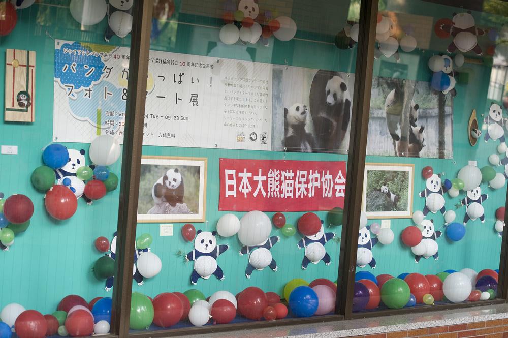 「パンダがいっぱい!フォト&アート展」16日目