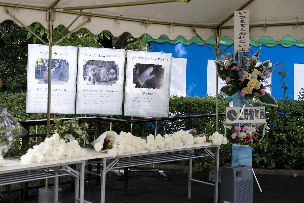 上野動物園 動物慰霊祭