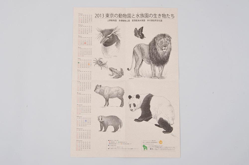 2013 東京の動物園と水族園の生き物たち