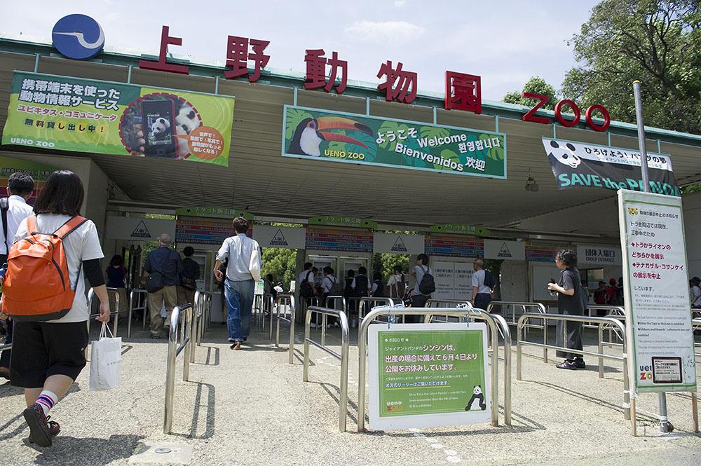 上野動物園 シンシン非公開