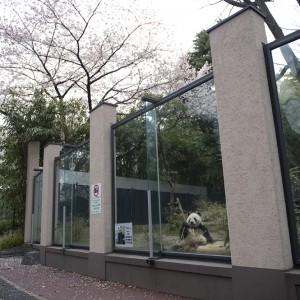 120411-DSC_1030-gallery-ri