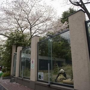 120411-DSC_1554-gallery-ri