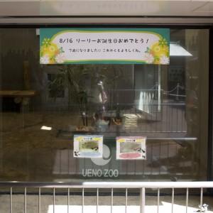 120816-DSC_5486-gallery