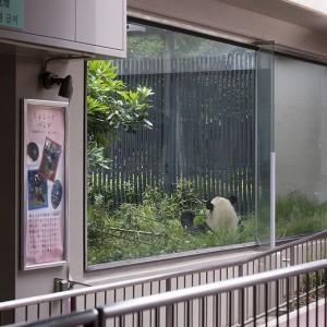 130605-DSC_7478-gallery-ri