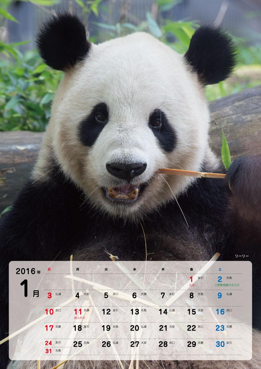 calendar-2016-01