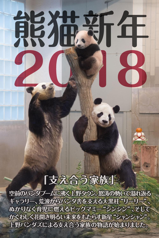 熊猫新年2018
