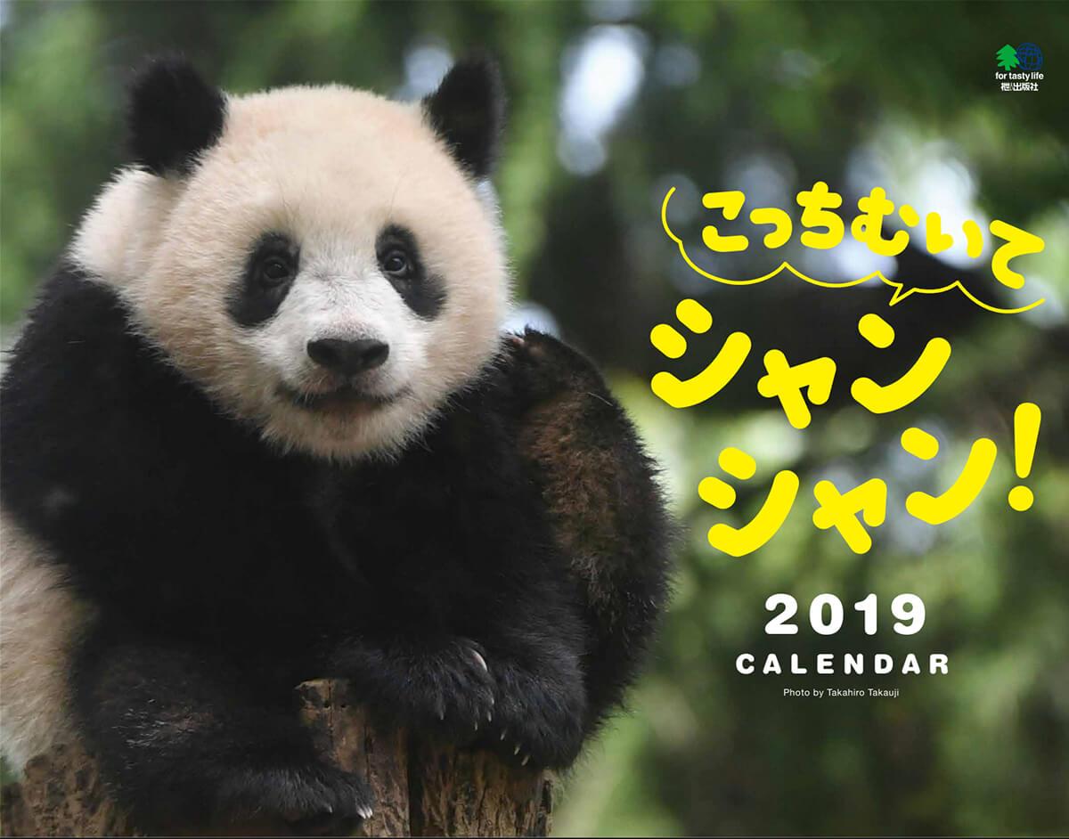 こっちむいてシャンシャン 2019カレンダー